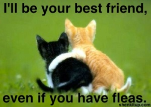 best-friendships-last