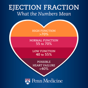 ejection-fraction-what-the-numbers-mean-small